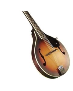Rocky Top Mandolin Acoustic Electric